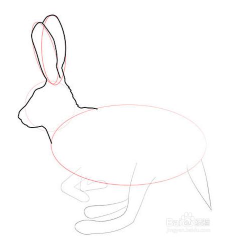 """铅笔画兔子教程_""""史迪仔""""铅笔画教程"""