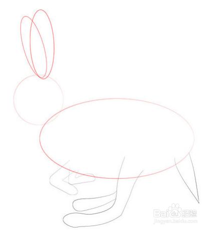 彩笔怎样画兔子?铅笔画兔子教程